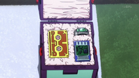 Inside Ging's Box