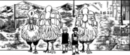 Special 2- Pairo and Kurapika lead birds away