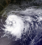 Tropical Storm Edouard 2008