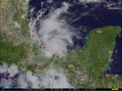Invest 95L 25 Aug 2013 1645z