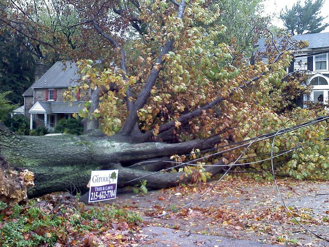 File:HurricaneSANDYCheltenham.png