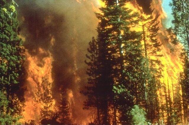 File:Wildfire in California.jpg