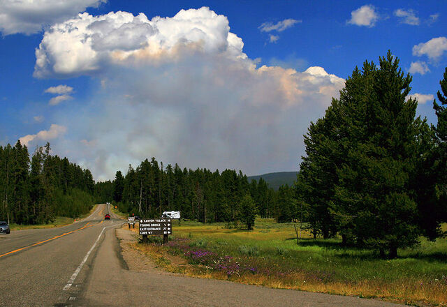 File:Wildfire in Yellowstone NP produces Pyrocumulus cloud.jpg