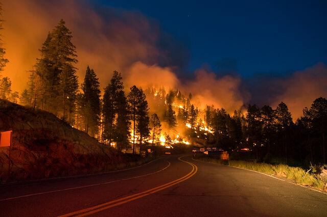 File:Wildfire (9).jpg