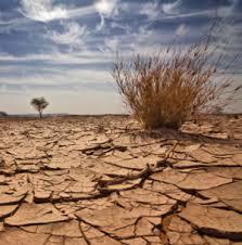 File:Drought - 3.jpg