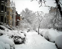File:1600 block of 19th Street, N W - 2010 blizzard.jpg