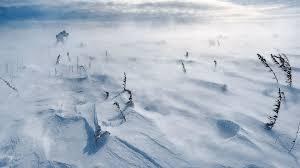File:Deep Snow (6).jpg