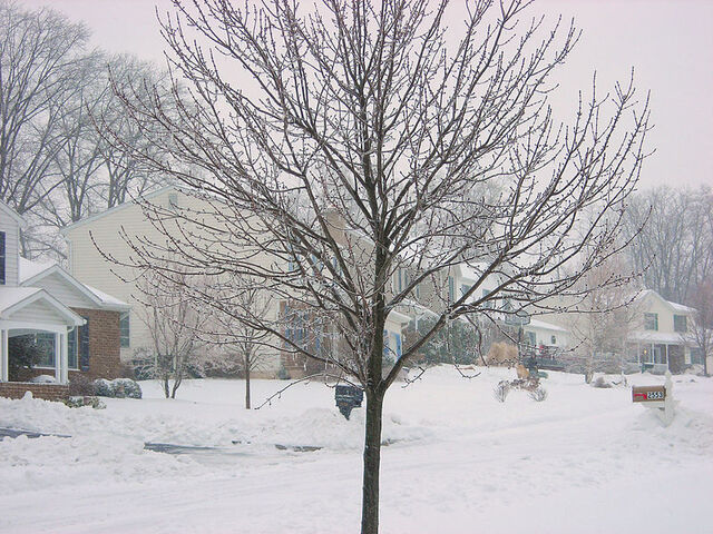 File:2007 Winter Storm.jpg