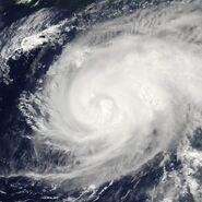 Typhoon maria 2006