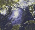 Tropical Storm Bonnie 2004.jpg