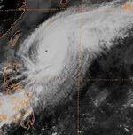 Typhoon (11).jpg