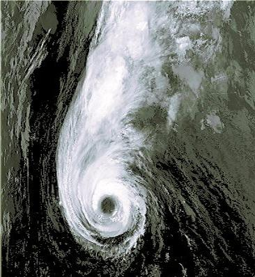 File:Hurricane Epsilon AVHRR false color image.jpg