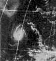 File:Hurricane Connie 1974.png