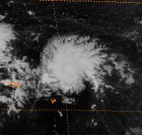 File:Tropical Depression 2 (1983).jpg