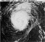 File:Hurricane Irene (1981).JPG