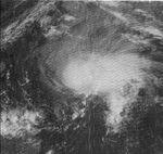 Katrina 81 sat.jpg