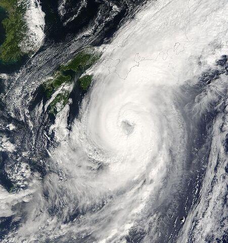 File:Typhoon Choi-wan 2003.jpg