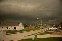 Storm 100