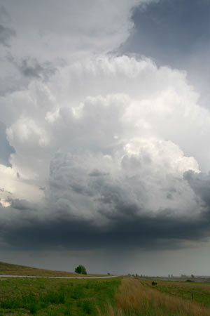 File:Storm 20.jpg