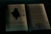 Midna's book