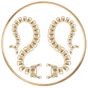 Darknut Legion