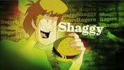 Shaggy Title Card