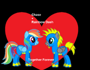 Chase Ponified &Rainbow Dash