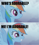 Rainbow Dash is adorable
