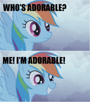 Rainbow Dash is adorable