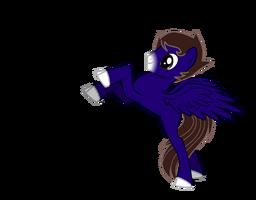 Ian Altwater Pony for IAAS