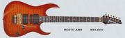 1994 RG370 AMS