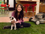 Icarly-idate-sam-and-freddie-10