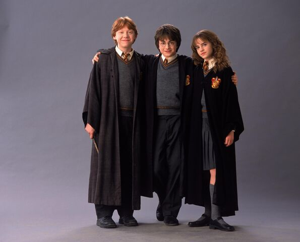 File:Harry potter and the chamber of secrets 019.jpg