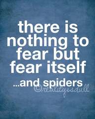 File:Fear and spiders.jpg