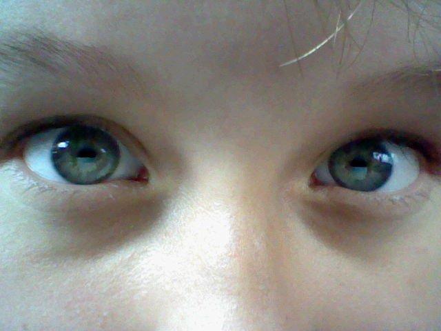 File:Eyesstaringintoyoursoulneveischeese.jpg