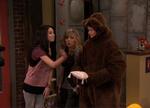 Cibby Ring Bear Bearer ido
