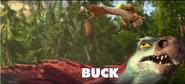 Buck and Gavin