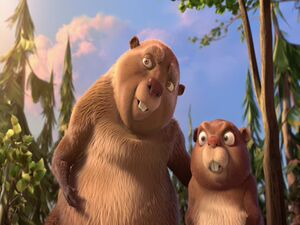 Present Day Beavers