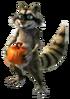 Pumpkin raccoon
