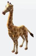 Valen giraffe