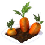 Carrotpatch