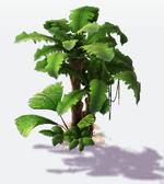 Deco jungle foliage