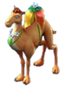 Clean circ camel