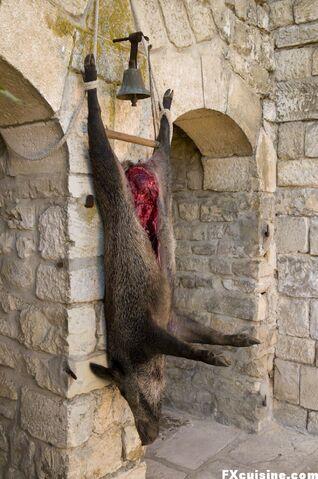 File:Spit-wild-boar-04.jpg
