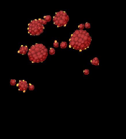 File:Raspberries.png