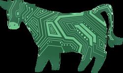 Cow digital