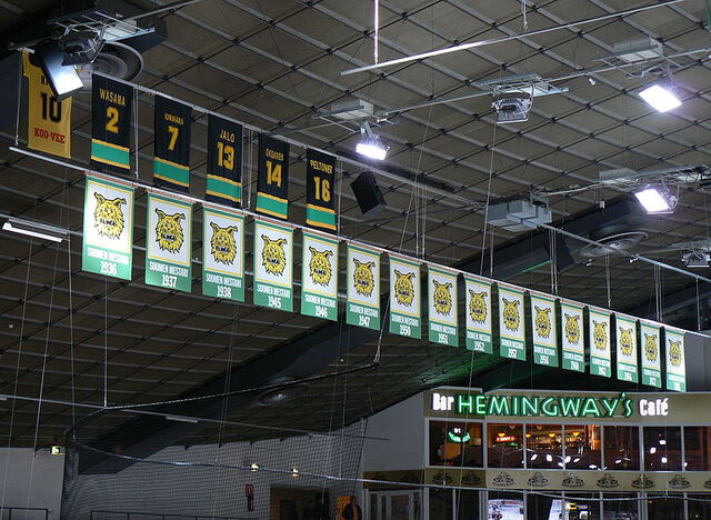 File:Ilves banners.jpg