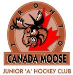 File:Toronto Canada Moose.png