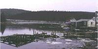 Cole Harbour