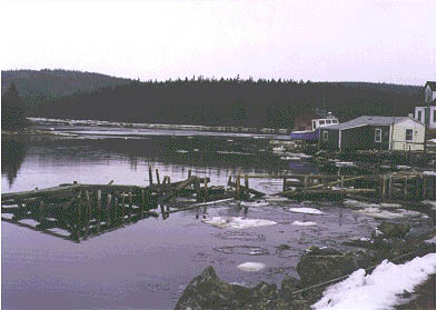 File:Cole Harbour, Nova Scotia.jpg